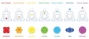 Chakras of a meditating man. Symbols with sanskrit names and appropriate colors. Isolated vector illustration on white background.