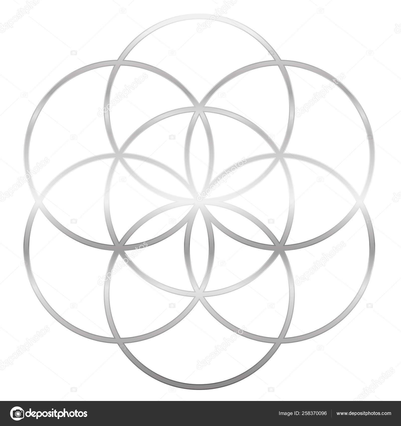 Seed Of Life Flower Of Life Silver — Stock Vector © Furian