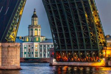 Saint Petersburg. Museum of the Kunstkamera. A divorced bridge. Bridges of Petersburg. Cities of Russia. White nights in St. Petersburg.