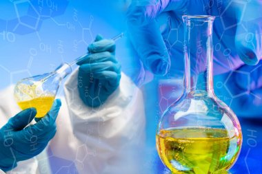 Laboratory studies of raw materials for the chemical industry. Hands of chemists in gloves and flasks with yellow chemical liquids. Comparison of properties of substances. stock vector