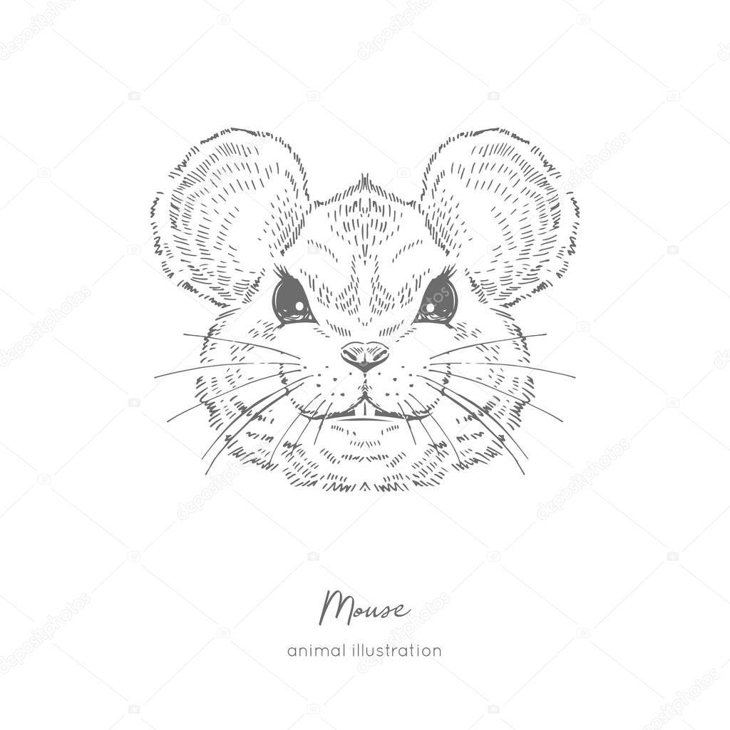 Symmetrical Vector portrait illustration of mouse