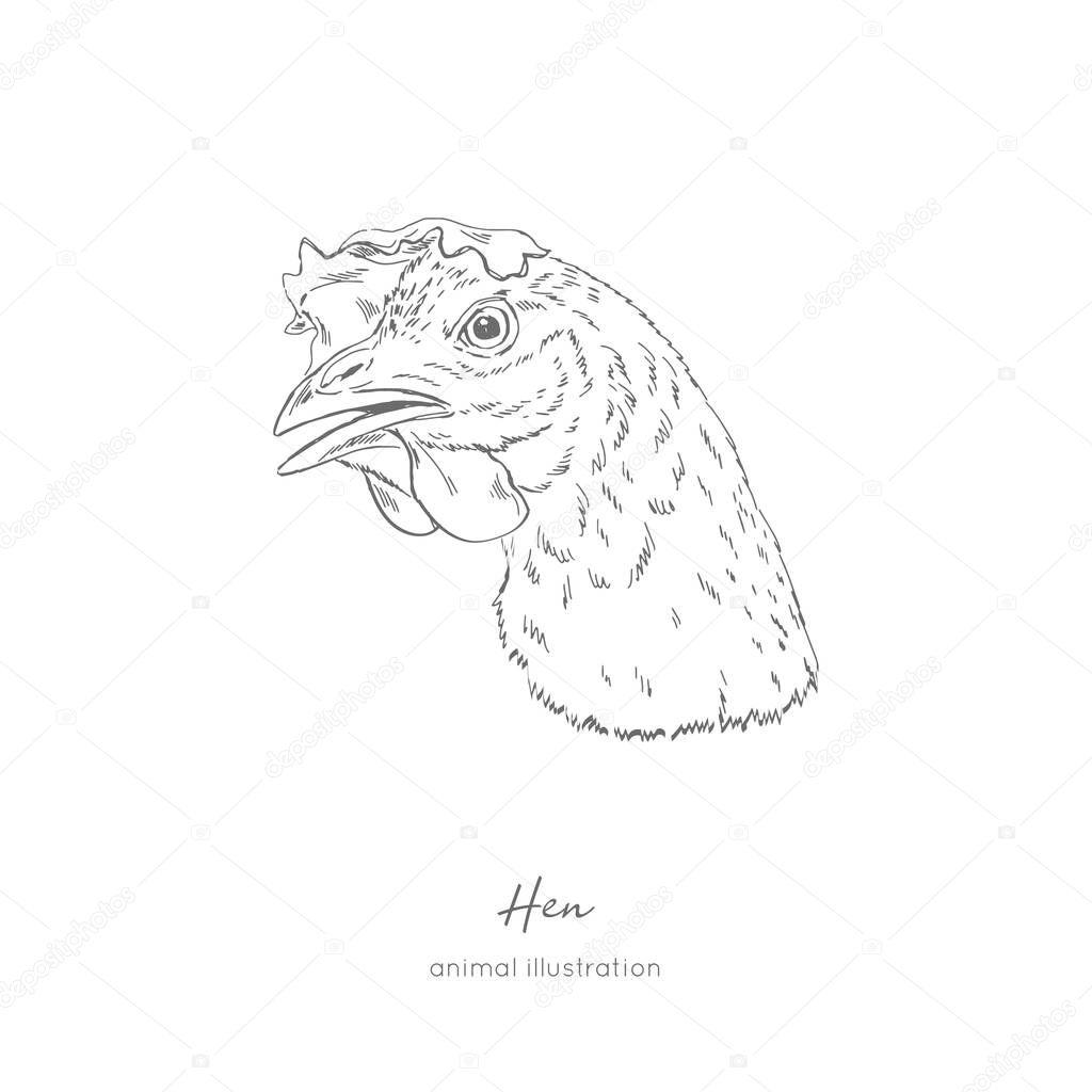 Side view Vector portrait illustration of hen bird