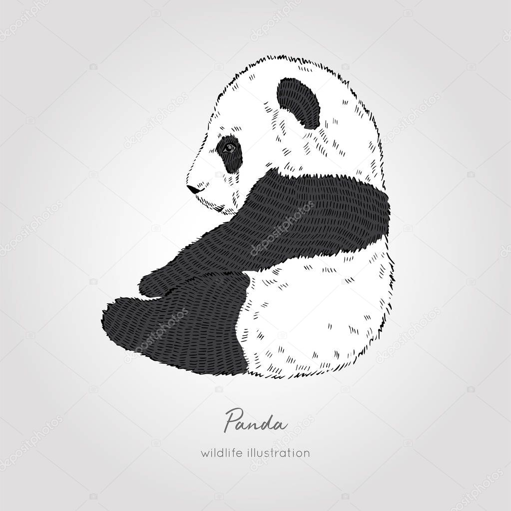 Black and white vector illustration of cute little panda. Perfect for kids design.