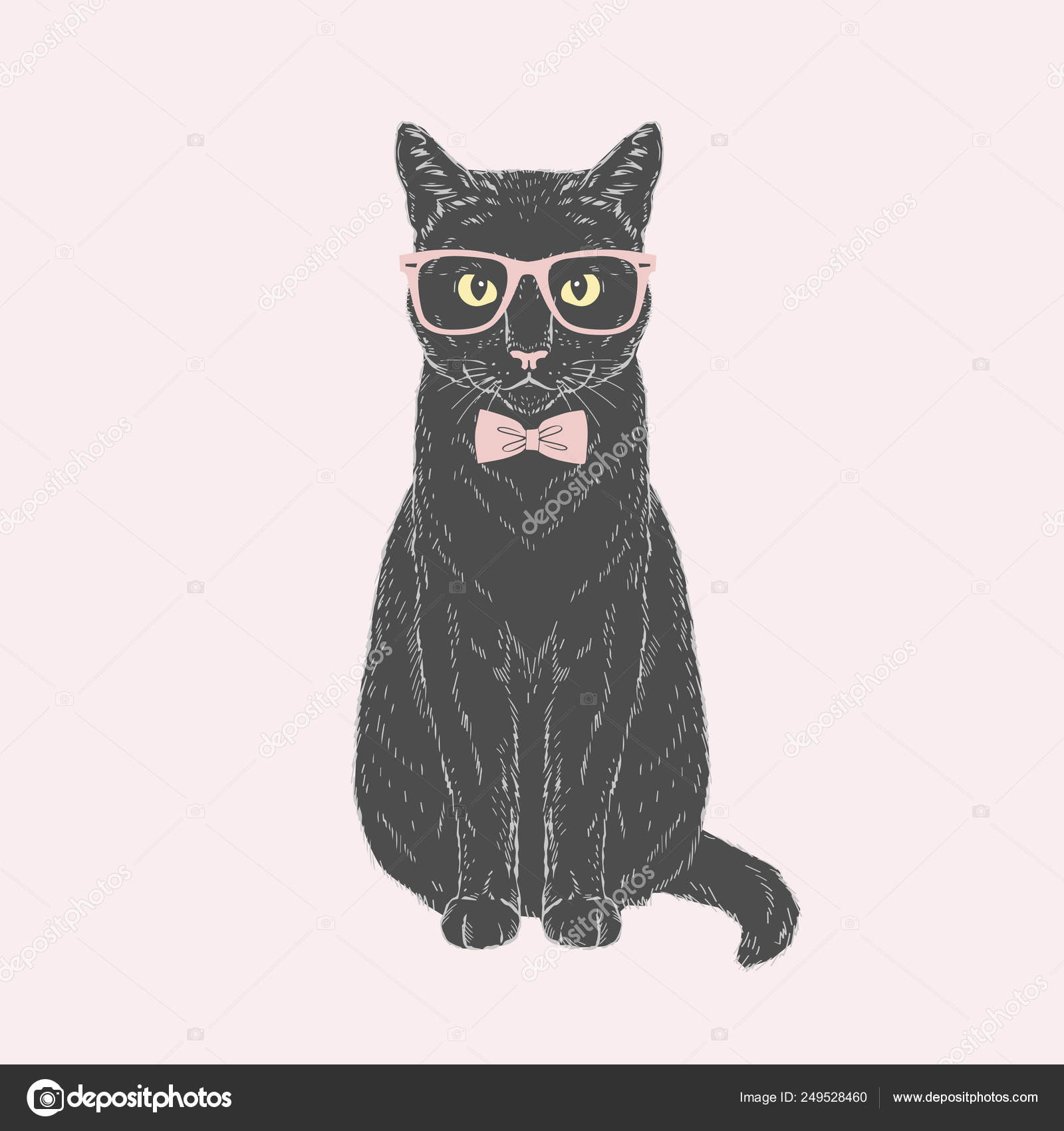 73724722e24f Black male cat dressed up in tie bow and glasses on pink background. Vector  hand drawn fashion animal illustration.
