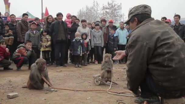 Xianyang, China-Feb 26 2012, pouliční umělci opice. Tohle je tradiční čínská lidová zábava.