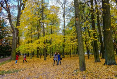 St Petersburg, Russia - Oct 7, 2016. People walking at autumn park of Catherine Palace in Saint Petersburg, Russia.
