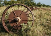 Old rusty wheels of agricultural machinery abandoned in dry grass.