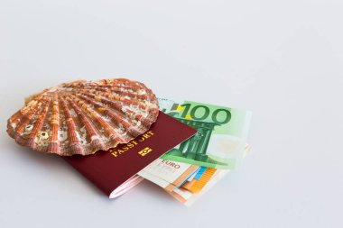 Passport on a light background with shell and russian ruble
