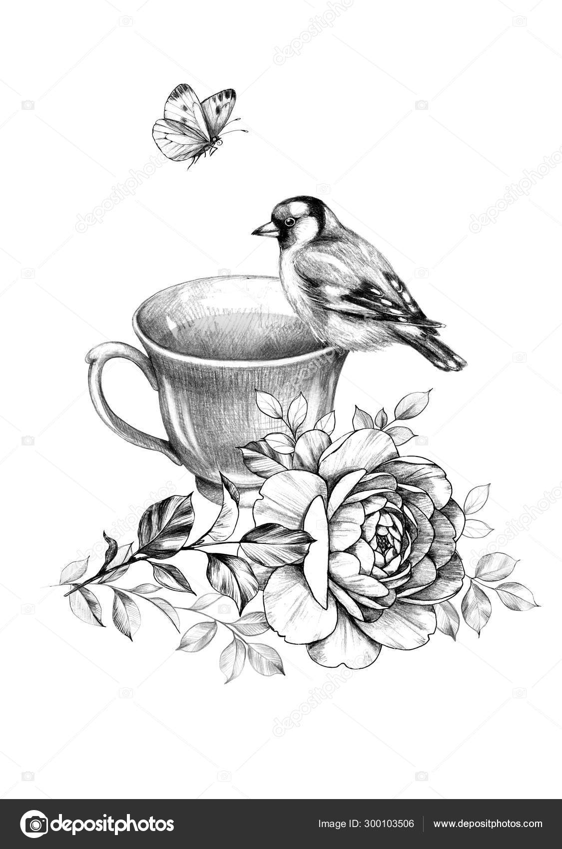 Cup Of Tea Bird And Butterfly Stock Photo C Valiva 300103506