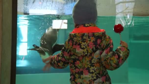 Young Girl Waving to Swimming Penguins