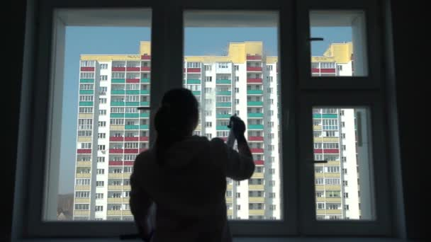 Silhouette of the Woman Cleaning Window