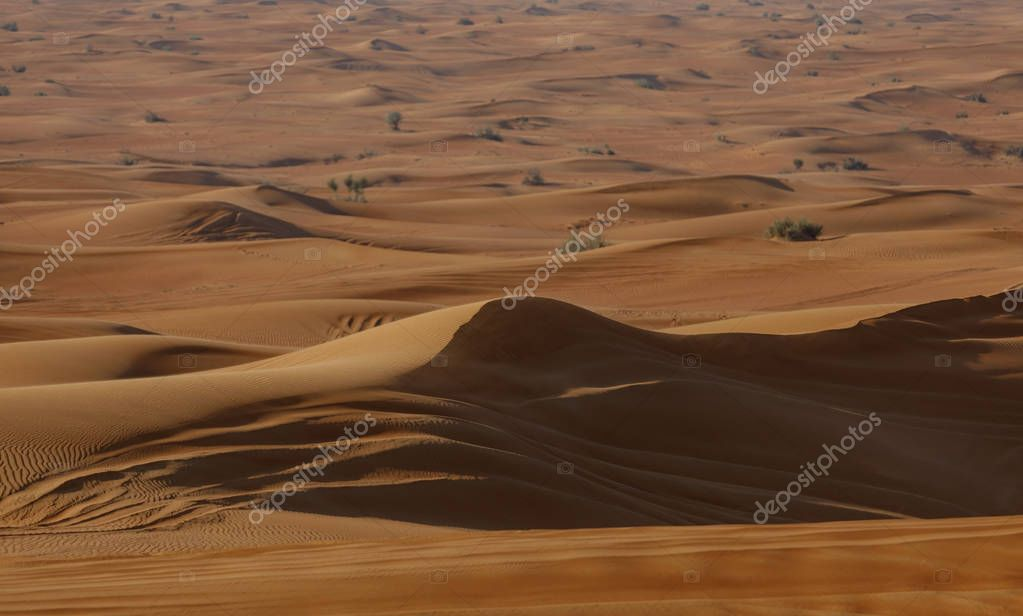 Dunes in the desert.