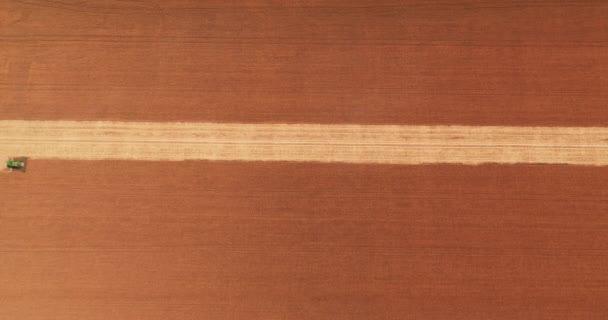 Vista aerea. La moderna mietitrebbia raccoglie il raccolto di grano in campo al tramonto. Combina il lavoro sul campo. Industria alimentare. Raccogliere campo di grano agricoltura agricola coltura segale agricolo agricoltore agricolo agricolo