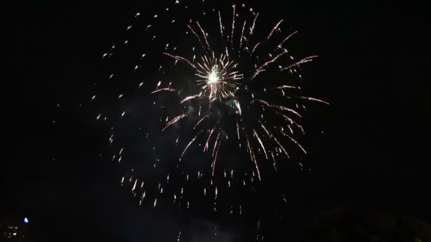 Zářící ohňostroj. Novoroční oslava v předvečer svátku. Pestré ohňostroje nad noční oblohou