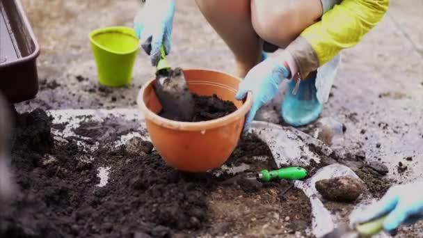 Zahradničení. Dívka pracuje v zahradě z keřů hortenzie. Žena zahradník vody květiny se zavlažovací plechovkou. Květiny jsou růžové, modré a kvetou na venkově