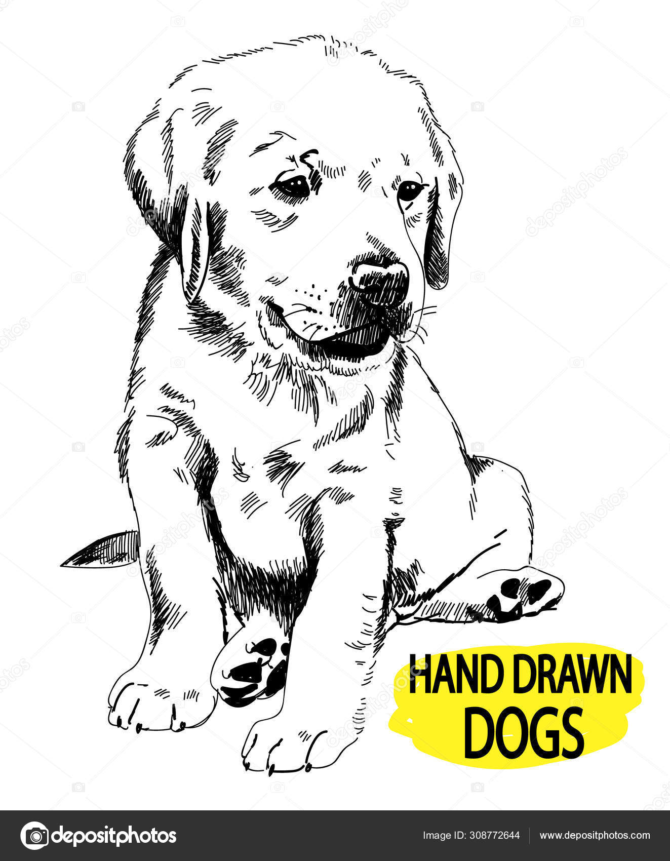 Labrador Puppy Sitting Drawing Hand Sketch Stock Vector C Rant Goi 308772644
