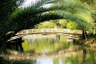 Bridge on the lake of Infante Don Pedro park in Aveiro, Portugal. Europe