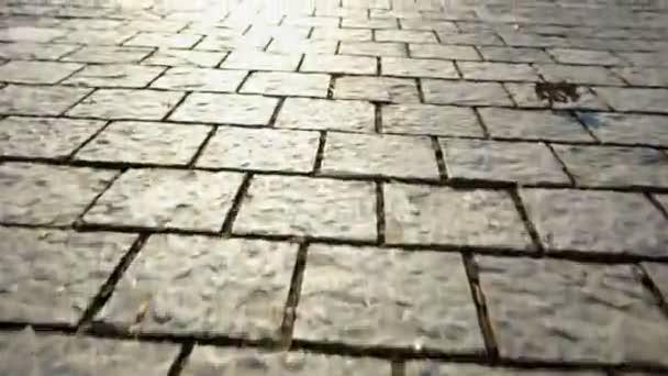 Dlažba z kamene. Krásný zahradní chodník