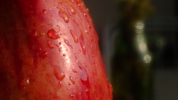 large drops of clear water slowly roll down the wet skin of ripe, red, juicy Apple. On a green background. macro mode