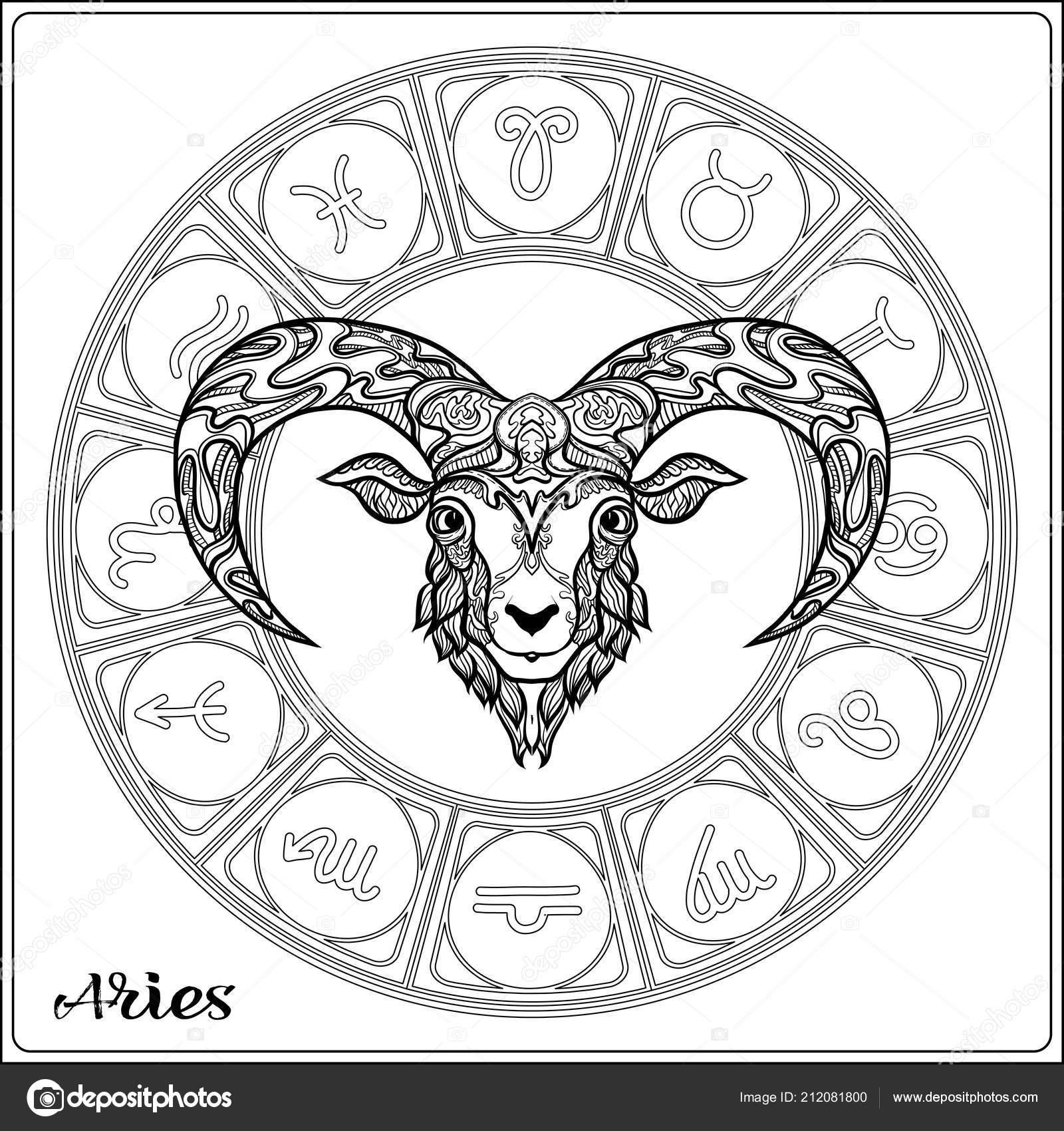 Zeichen Des Tierkreises Astrologischen Horoskop Sammlung Vektor