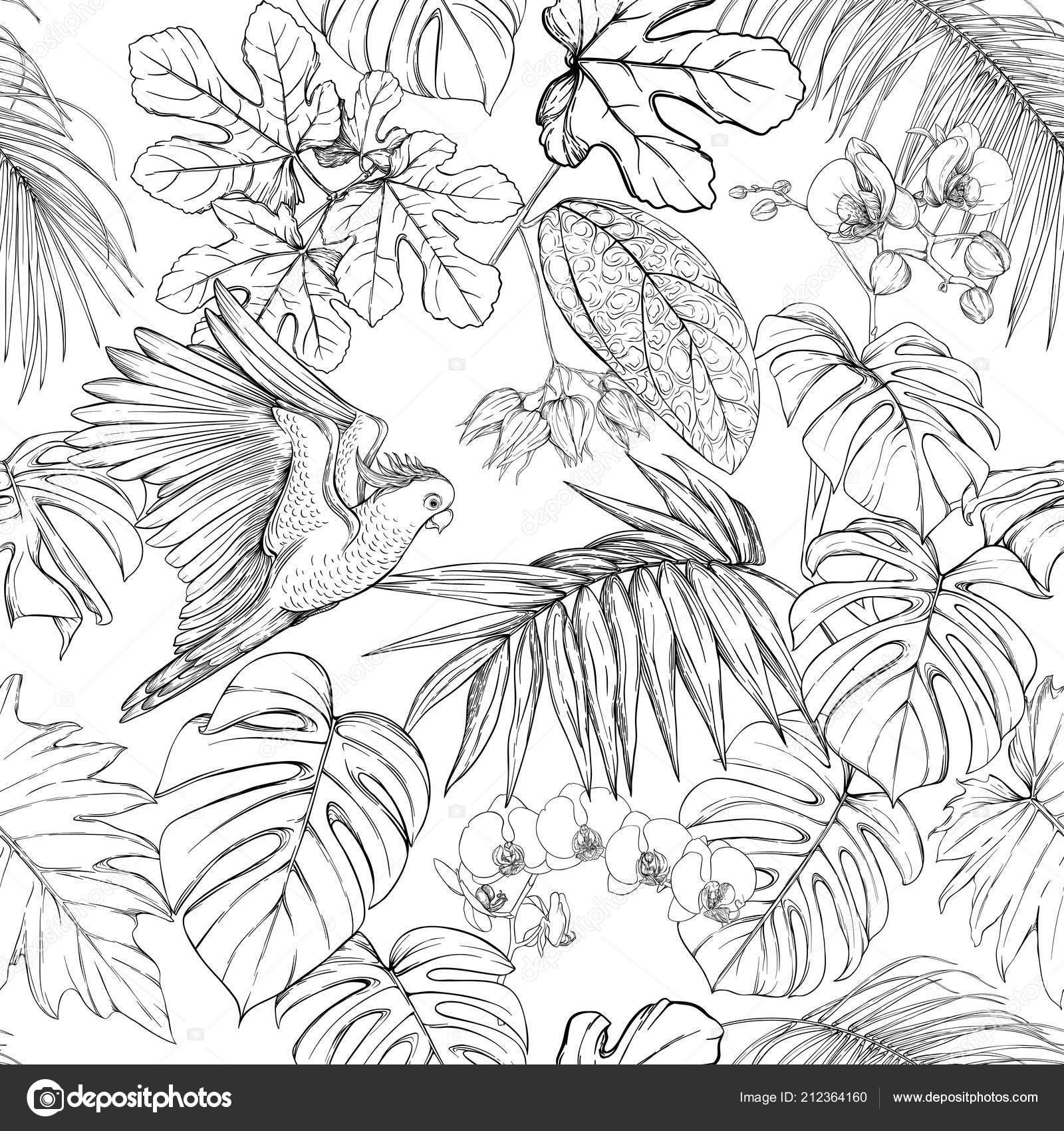 Modèle Sans Couture Fond Avec Plantes Tropicales Et De