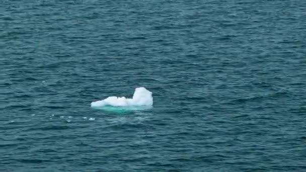 Eis schwimmt im kalten Wasser des Südlichen Ozeans der Antarktis