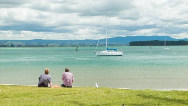 Tauranga New Zealand Older Couple Sitting Together on Green Grass Viewing Over the Harbour on a Sunny Day