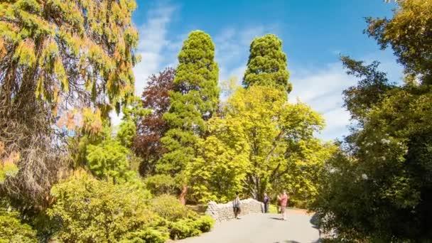 Během perfektního slunného letního počasí na Beacon Hill parku se po ulici Victoria př.
