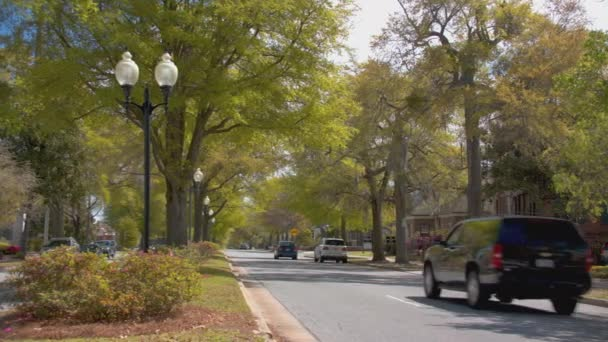 Wilmington NC Historical Tree Lined Market Street with Vehicle Traffic Driving from Downtown Southern Town Charm in North Carolina