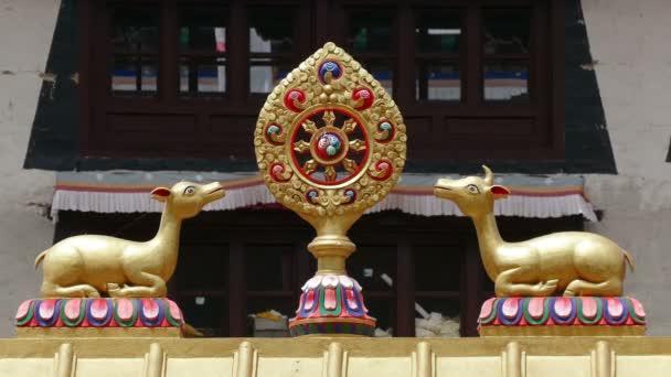 One Most Important Symbols Buddhism Dharma Wheel Background