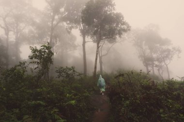 woman with raincoat standing in rainforest with fog