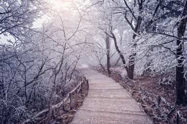 Winter road view in Huangshan National park. China
