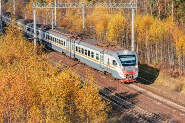 Modern high-speed train approaches to the station at autumn morning time.