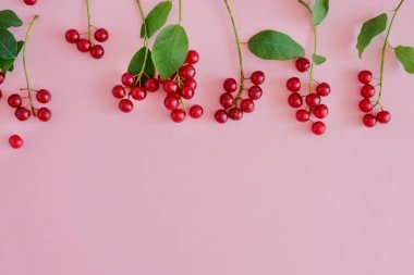 Small juicy red berries in a row horizontally on a pastel pink background with copy space for text. Top view, flat lay.