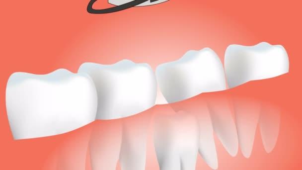 Záběr na zub. Izolováno na červeném pozadí.