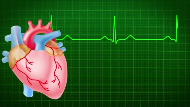 Footage of  ECG test of heart. Isolated on red background.