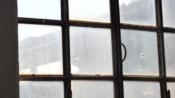 glass window pane textured tin can hitting and crashing glass window pane stock video