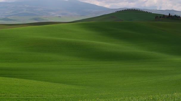 Videó egy szép reggeli kilátás nyílik a zöld tavaszi mezők és dombok Toszkánában Pienza közelében