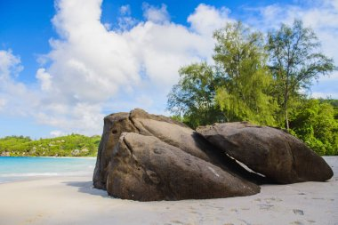 Paradise view of Seychelles beach with rocks