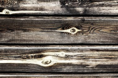 a wall of old pine wooden timber with knots, burnt out in the sun