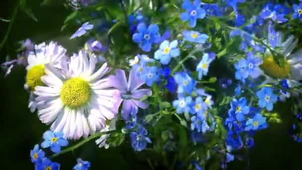 forget me nots and daisies wildflowers bouquet turning close up