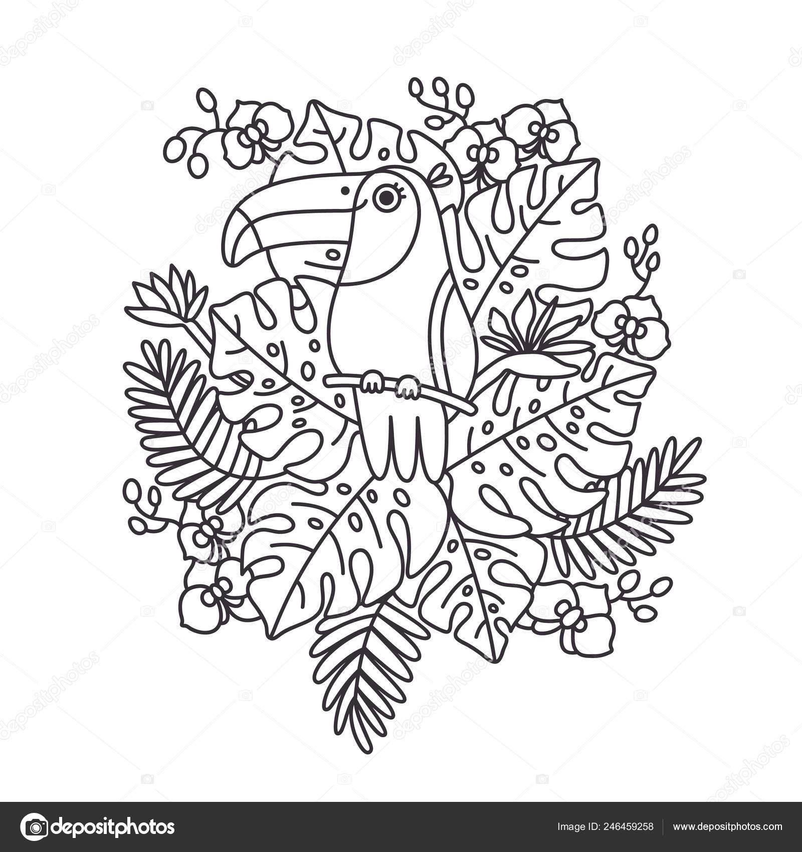Птица Тукан Сидит Ветке Тропических Листьев Цветов Печать ...