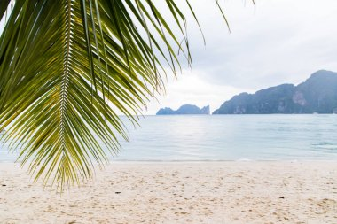 Dreamy beach view with palm tree leaf and white sand in Phi Phi
