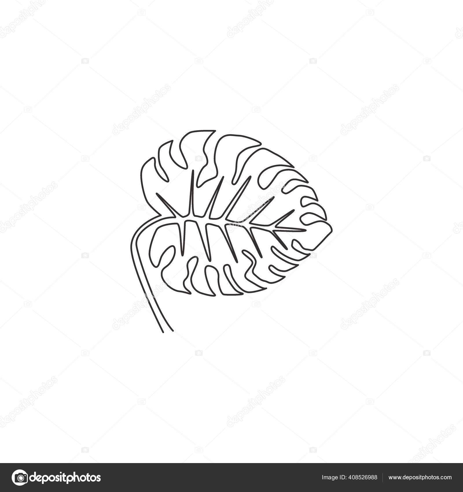 One Single Line Drawing Cute Beauty Tropical Leaf Monstera Plant Stock Vector C Simpleline 408526988 Tropical leaf, printable art, monstera leaves, tropical leaves, tropical decor, green wall decor, instant download, wall art. https depositphotos com 408526988 stock illustration one single line drawing cute html