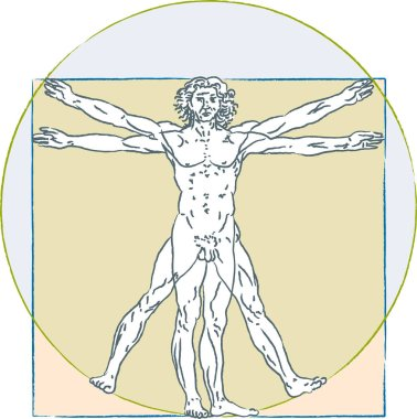Leonardo Da Vinci vitruvian man. Human body proportions standard.