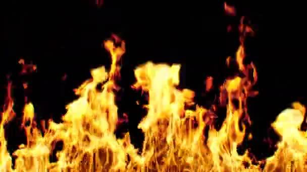 Gyönyörű reális nagy tüzet varrat nélküli fekete háttér. Végtelenített elszigetelt láng 3D-s animáció. 4 k Ultra Hd 3840 x 2160