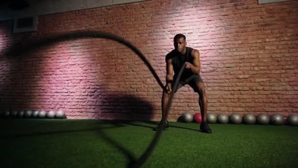 sport one model vitality energy health