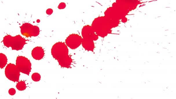 Rudou krví šíří na bílém pozadí