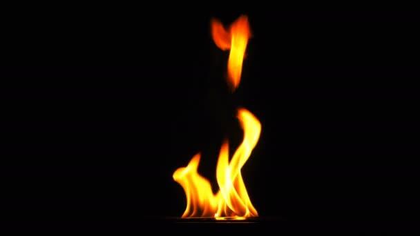 Oheň hořící plamen tepla na černém pozadí