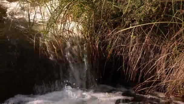 Pohled na vodopád v přírodě
